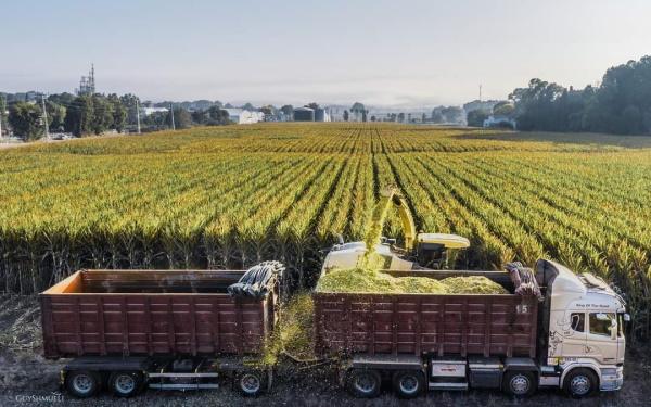 שדות וחקלאות